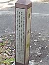 Dscn2594s